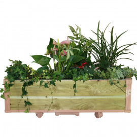 [Gallery Deco] Moving DIY Preservative tree wooden pot, plants large, 2 level, indoor garden, made in Korea