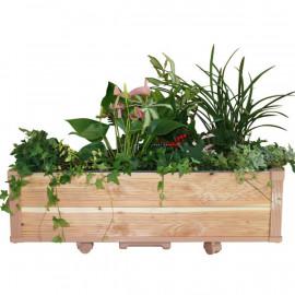 [Gallery Deco] Moving DIY wide wooden pot, plants large, 2 level, indoor garden, made in Korea