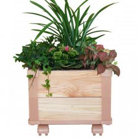 [Gallery Deco] Moving DIY wooden pot, plants medium, 2 level, indoor garden, made in Korea