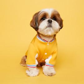 [FLOT] Stadium Jumper, Yellow, Dog Clothes _ Dog Shirts, Pet T-Shirts _ Made in KOREA