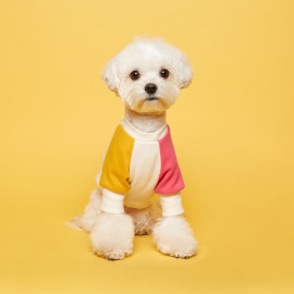 [FLOT] Combi Sweatshirt, Yellow Hot Pink, Dog Clothes _ Dog Shirts, Pet T-Shirts _ Made in KOREA