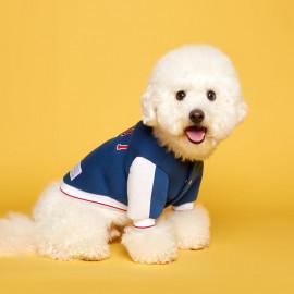 [FLOT] Stadium Jumper, Blue White, Dog Outerwear _ Dog Shirts, Pet T-Shirts _ Made in KOREA